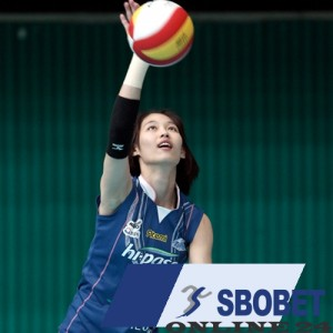 sbobet and volleyball