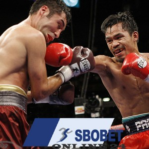 Sbobet and boxing