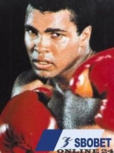 Sbobet and Boxer Legend